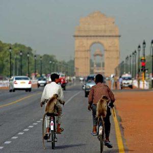 india014