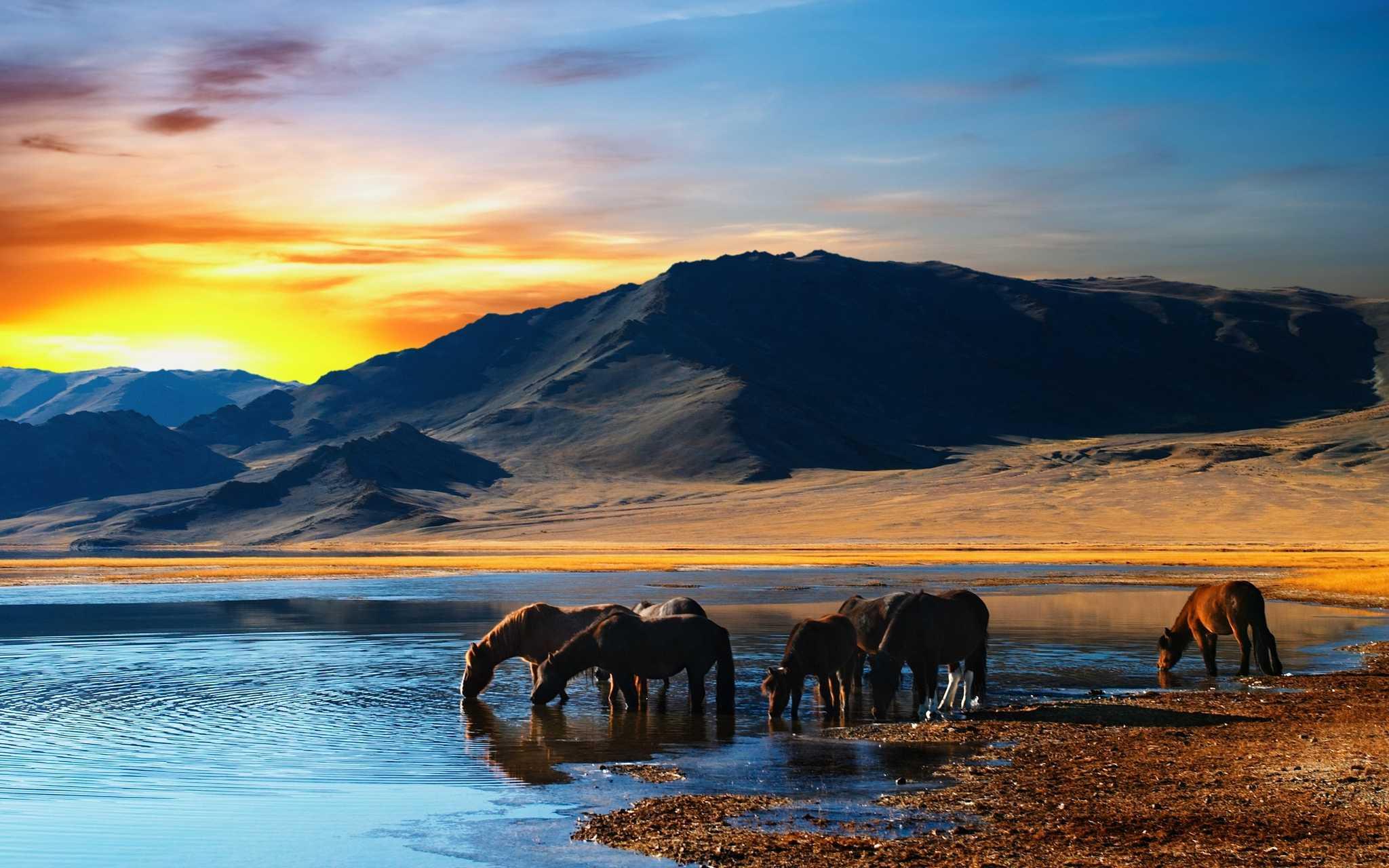 Μογγολία – Mongolia