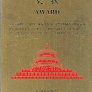 award_china_2002