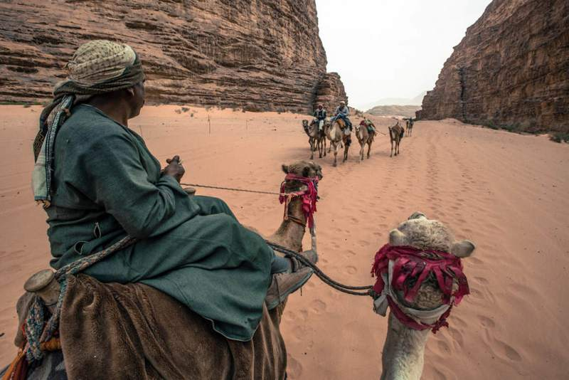 roadtrip-jordan-camels-midle-east-cel-tours